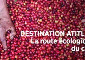 Destination Atitlan - The Ecological Coffe Route