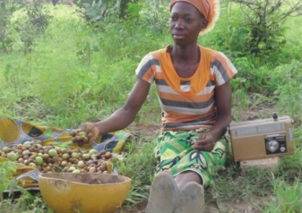 Case Study : Scaling up shea nuts harvesting and marketing in Burkina Faso